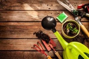 Gardening Round-up image
